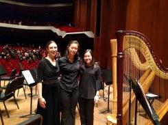 Houston Symphony Side by Side with Youth Symphony