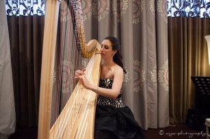 Heather & brian wedding harp pic